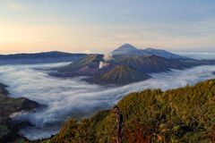 Bromo vocalno Stock Image