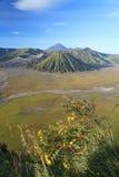 Bromo Volcano Mountain Fotografering för Bildbyråer