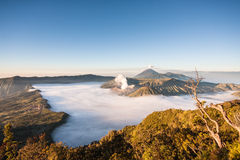Bromo volcano Royalty Free Stock Photography