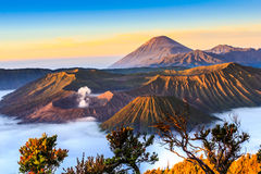 Bromo volcano in sunrise Stock Image