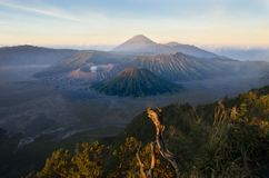 Bromo Volcano Sunrise, Java, Indonesia Royalty Free Stock Photography