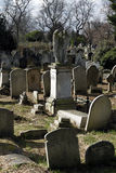 Brompton Cemetery in London Stock Photography