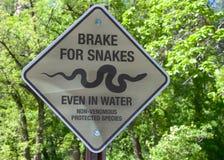 Bromsen för ormar undertecknar in Arizona Royaltyfri Fotografi