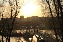 Bron över dammet i parkerar royaltyfria foton