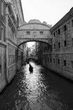 Bron av dogarna Arkivbild