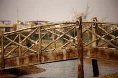Bron av förälskelse royaltyfri bild