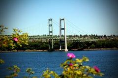 bron begränsar tacoma Royaltyfri Fotografi