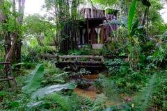 Bron i skogträdgård Arkivfoton