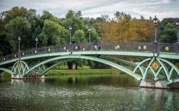 Bron inre Tsaritsyno parkerar med det färgrika trädet Arkivfoton