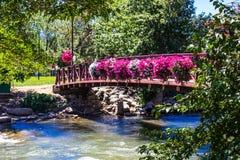 Bron med att hänga blommar på Truckee River i Reno, Nevada Royaltyfri Fotografi