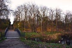 Bron och dammet i höst parkerar Royaltyfri Fotografi
