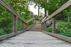 Bron och trappan som leder ut ur en natur, går royaltyfria foton