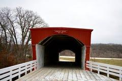 bron räknade hogbacken royaltyfria foton