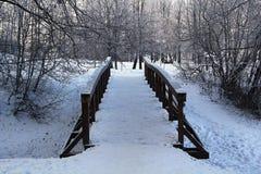 bron räknade snow Arkivbilder