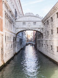 bron suckar venice Royaltyfria Foton