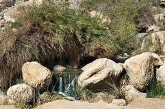 Bron van mineraalwater Royalty-vrije Stock Afbeeldingen