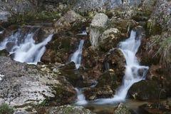 Bron van rivier stock foto's