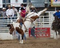 Bronc Bucking - irmãs, rodeio 2011 de Oregon Imagens de Stock
