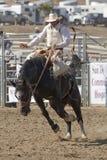 Bronc de la montura del rodeo de San Dimas foto de archivo libre de regalías