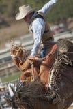 Bronc de selle de rodéo de San Dimas Photographie stock libre de droits