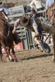 Bronc della sella del rodeo del San Dimas Fotografie Stock