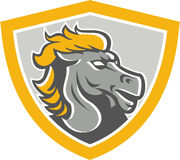 Bronco Horse Head Shield Royalty Free Stock Images