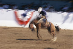Bronco rider Royalty Free Stock Photography