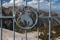 Bronco s'opposant avec une vue photographie stock libre de droits