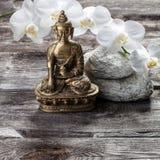Brons Buddha för andlighet och kvinnlig inre skönhet Royaltyfri Bild