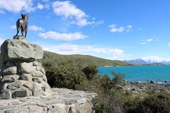 Brons colliefårhundstatyn och sjön Tekapo, NZ arkivbilder