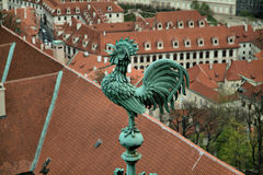 Brons hanen på tornet, gamla Prague, Tjeckien Royaltyfri Foto