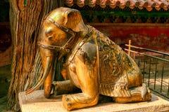 Brons knäfallaelefantstatyn i Forbidden City, Peking royaltyfria bilder
