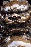 Bronskineslejon royaltyfri fotografi