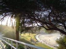 Bronte海滩,步行道路 库存图片