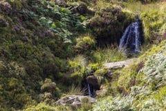 Bronte秋天, Haworth停泊 呼啸山庄, Bronte国家 约克夏 英国 库存照片