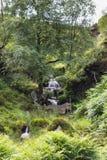 Bronte nedgångar, Haworth hed Wuthering Heights Bronte land yorkshire england Royaltyfria Bilder
