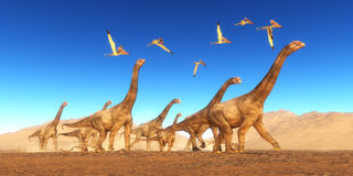 Brontomerus Dinosaur Desert Stock Images