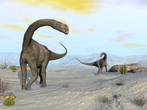 Brontomerus dinosaurs in the desert - 3D render Royalty Free Stock Photography