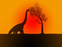Brontosaure mangeant au coucher du soleil Photo libre de droits