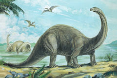 brontosaurus royalty-vrije illustratie