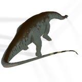 Brontosaurus d'aka d'Apatosaurus Photographie stock libre de droits