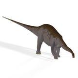 Brontosaurus del aka del Apatosaurus Imágenes de archivo libres de regalías