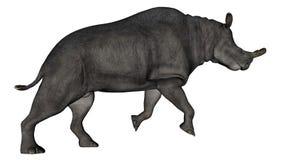 Brontotherium or megacerops dinosaur walking - 3D Stock Photo