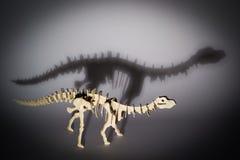 Brontozaur Obrazy Stock