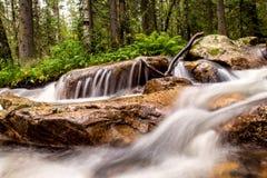Bronwater van een bergkreek Stock Afbeeldingen