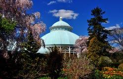 Bronx, NY: Enid Haupt Conservatory Stock Photos