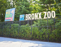 Bronx Zoo. NEW YORK CITY - Aug 5: Famous Bronx Zoo is one of the biggest metropolitan zoos in the world with over 4,000 animals on August 5, 2012 in Manhattan stock photo
