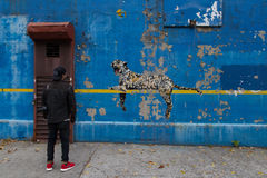 Bronxite admira una pared pintada Bansky en el Bronx Imagen de archivo libre de regalías