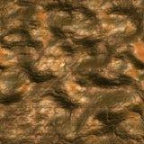 Bronze Stock Image