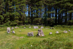 Bronze Age Stone Circle Dartmoor National Park Devon Stock Image
